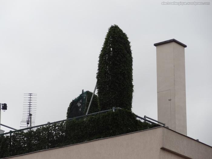 antennerelais20130221