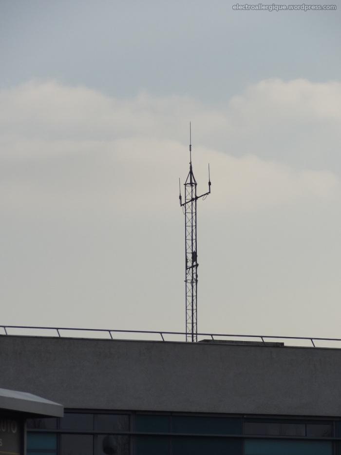 antennetetra220130221