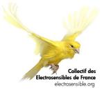 logo_electrosensibledotorg