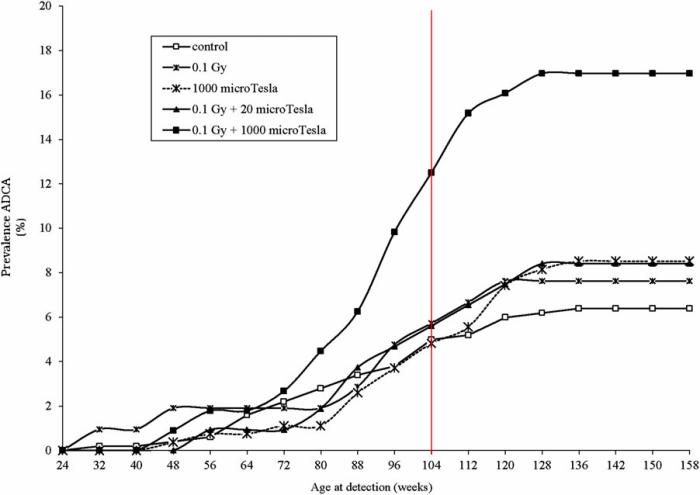 Incidence cumulée de tumeurs du sein au cours de la vie des rats femelles (en semaine) Figure 7 de l'étude de Ramazzini avec notre ajout d'une ligne rouge indiquant les 104 semaine cumulés